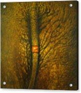 Chang Thai Acrylic Print