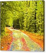 Changing Seasons Acrylic Print