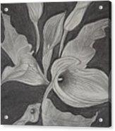 Charcoal Acrylic Print