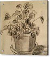 Charcoal Planter Acrylic Print