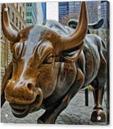 Charging Bull 4 Acrylic Print