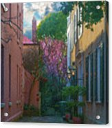 Charleston Alley In The Spring Acrylic Print