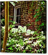 Charleston Alley Window Acrylic Print