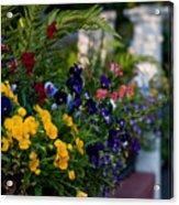 Charleston Flower Boxes Acrylic Print