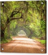 Charleston Sc Edisto Island Dirt Road - The Deep South Acrylic Print