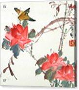 Charm Of Nature Acrylic Print