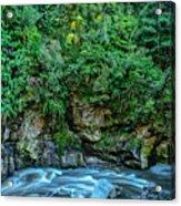 Charming Creek Walkway 2 Acrylic Print