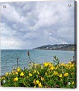 Charmouth Overlook Acrylic Print