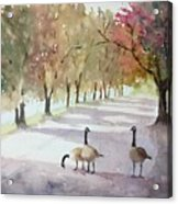 Chat In The Park Acrylic Print