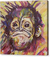 Cheeky Lil' Monkey Acrylic Print