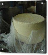 Cheese Acrylic Print