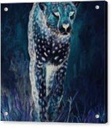 Cheetah Running Acrylic Print