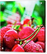 Cherries And Berries Acrylic Print