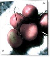 Cherries In The Light Acrylic Print