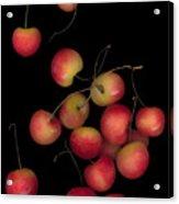 Cherries Multiplied Acrylic Print
