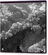 Cherry Blossom Season In Japan Mountain Hills Trees Photography By Navinjoshi At Fineartamerica.com  Acrylic Print