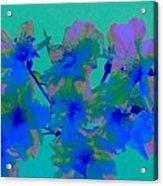 Cherry Blossom Series 2 Acrylic Print by Jen White