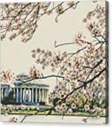 Cherry Blossom Tidalbasin View Acrylic Print