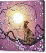 Cherry Blossom Waltz  Acrylic Print