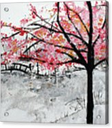 Cherry Blossoms And Bridge Meadowlark Botanical Gardens 201728 Acrylic Print
