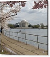 Cherry Blossoms With Memorial Acrylic Print