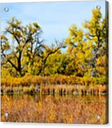 Cherry Creek Pond In Autumn Acrylic Print