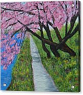 Cherry Trees- Pink Blossoms- Landscape Painting Acrylic Print