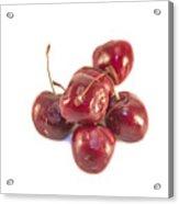 Cherrys Prunus Avium Acrylic Print