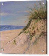 Chesapeake Bay Dune Acrylic Print