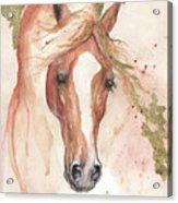 Chestnut Arabian Horse 2016 08 02 Acrylic Print
