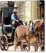Chestnut Horses Pulling Carriage Acrylic Print