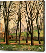Chestnut Trees At The Jas De Bouffan Acrylic Print by Paul Cezanne