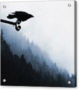 Chevron Raven Acrylic Print