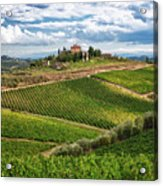 Chianti Landscape Acrylic Print by Eggers   Photography
