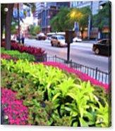 Chicago Color Acrylic Print