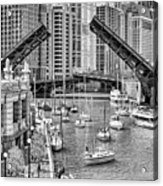 Chicago River Boat Migration In Black And White Acrylic Print