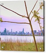 Chicago Skyline - The View From Montrose Point Acrylic Print