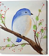 Chickadee On A Branch With Leaves Acrylic Print