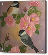 Chickadees And Roses Acrylic Print