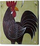 Chicken Kitty Acrylic Print