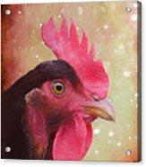 Chicken Portrait - Painting Acrylic Print