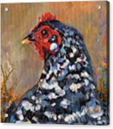 Chicken With A Pearl Ear Ring Acrylic Print