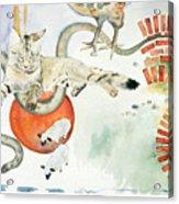 Chickenfoot Serpentine Acrylic Print