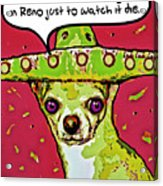 Chihuahua - I Killed A Squeaktoy In Reno Acrylic Print