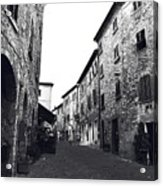 Chilling Out In Tuscany Acrylic Print