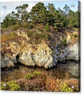 China Cove, Point Lobos Acrylic Print by Yair Karelic