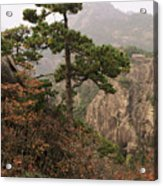 China, Mt. Huangshan Acrylic Print