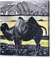 China Silk Road Acrylic Print