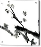 Chinese Brush Lv Acrylic Print