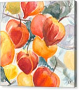 Chinese Lanterns - Symbol Of Friendship Acrylic Print